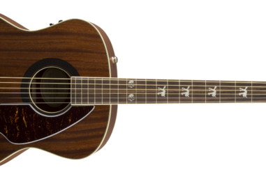 Top 10 Acoustic Guitars